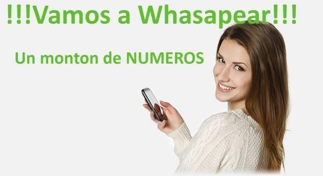 Whatsapp de mujeres bellas 15475